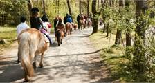 Ponyreiten in Center Parcs Bispinger Heide