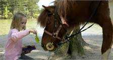 Mein Pony in Center Parcs Park Bostalsee