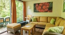 Premium-Ferienhaus EP526  in Center Parcs Erperheide